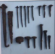 Nägel alte Zimmermannsnägel sehr alte Historisch aufgeklebt in Schaukasten