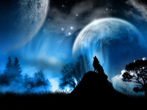 A1 A2 Wolf Canvas Print Wall Art Premium Howling Wolf in Moonlight Blue A4 A3