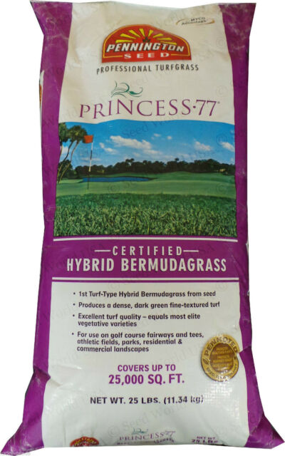 25 Lbs. Pennington Triangle Bermuda Grass Seed Covers 12,500 sq. ft.