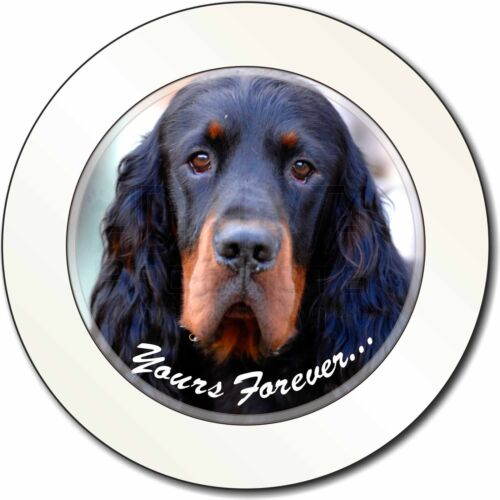 AD-GOR2yT Gordon Setter /'Yours Forever/' Car//Van Permit Holder//Tax Disc Gift