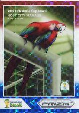 Panini Prizm World Cup 2014 Posters Plaid Prizm #6 Manaus