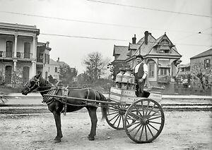 "1903 NEW ORLEANS LA, antique photo, wall deco,  Milk Man, Horse Carriage 14""x10"""