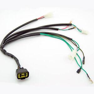 kick start wiring harness loom lifan w150cc 90cc 150cc pitpro trail image is loading kick start wiring harness loom lifan w150cc 90cc