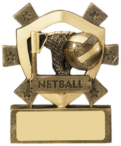 Free Engraving Netball Mini Shield Trophy 80mm Award RM629 good