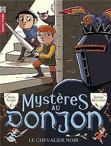 Mystères au donjon, Tome 1 : Le chevalier noir von Surge... | Buch | Zustand gut