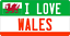 28cm x 14.5cm  I LOVE WALES LICENCE PLATE  METAL SIGN WELSH CYMRU CARDIFF 117