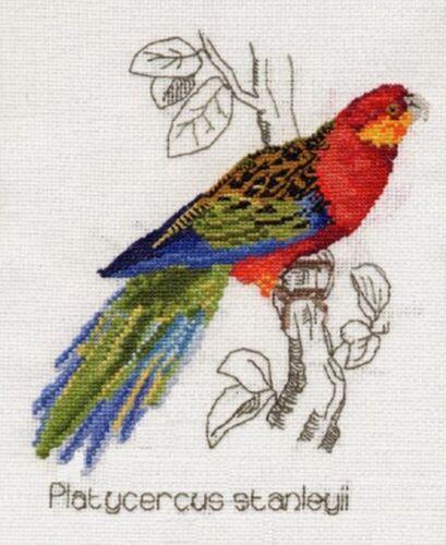 Rojo Con Tapa Perico stanleys Parakeet Cross Stitch Kits 14s Crimson Rossella