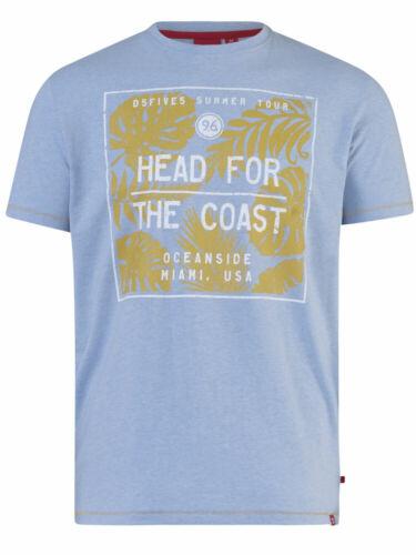 D555 homme bleu clair tête pour la Côte Imprimer T-Shirt Arizona - 1