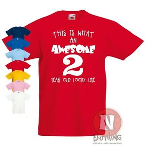 Awesome Two year old Kid t-shirt 1-4 years children/'s toddler 2nd birthday tee