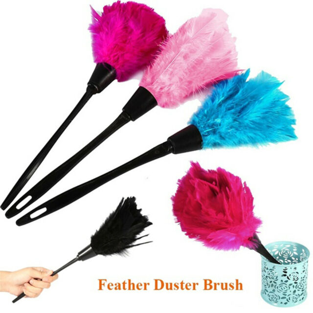 Handhold Portable Turkey Feather Duster Home Cleaning Cleaner Plastic Handle