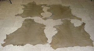 (XVA6800) Lot of 4 Hides of Green Brown Reptile Print Lambskin Leather Hide Skin