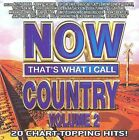 Now That's What I Call Country, Vol. 2 by Various Artists (CD, Aug-2009, Sony Music Distribution (USA))