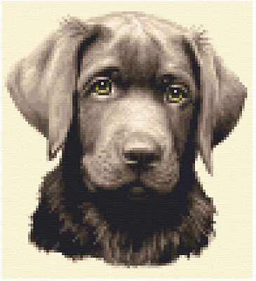 all materials CHOCOLATE LABRADOR dog full counted cross stitch kit