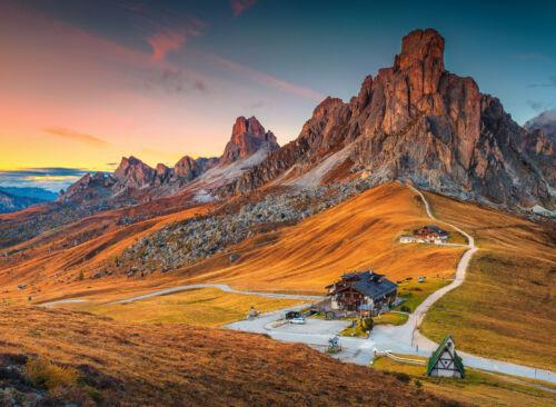 757V -Alpen Wald Gebirge Steine Felsen Blumen Sonne VLIES Fototapete-DOLOMITEN-