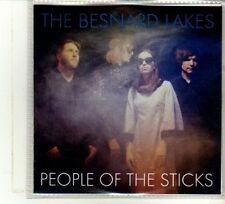 (DU228) The Besnard Lakes, People Of The Sticks - 2013 DJ CD