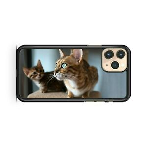 Cuddly Cool Cute Adorable Amazing Cute Cat Animals Colourful Phone Case Cover Ebay