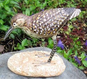 Dunlin-Sandpiper-Shore-Bird