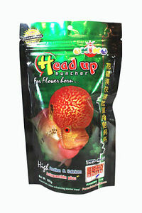 OKIKO High Quality Flowerhorn and Cichild Fish Food 100g. Pellet Size L Head Up