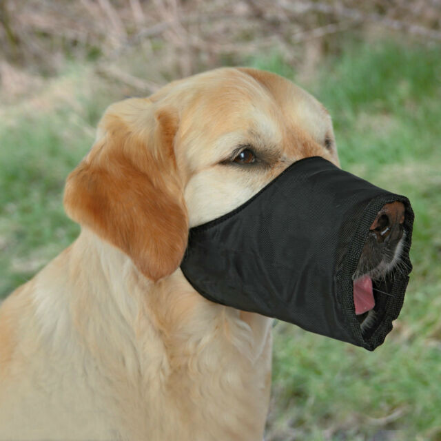 Black Dog Muzzle with Fleece Lining for Extra Small Dogs XS