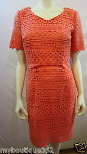 2c7e2a554a1 ANTONIO MELANI SUNKISS LACE DRESS SIZE 2 NEW WITH TAG 884449279537 ...
