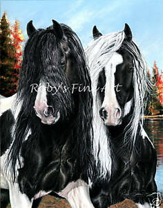 5-034-x-7-034-Horse-Art-Print-034-Mane-Attraction-034-Gypsy-Vanner-Horse-by-Artist-Roby-Baer