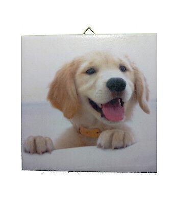 Dekofliese Wandbild Bild Geschenkidee Mitbringsel Hund Welpe 037DP
