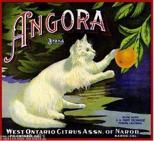 Ontario San Antonio Mt Mount Baldy #2 Orange Citrus Fruit Crate Label Art Print