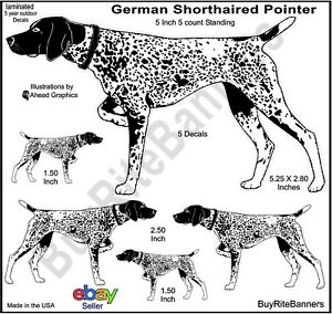 German-Short-Haired-Pointer-Decal-Stickers-5-Inch-5-Count-Bundle