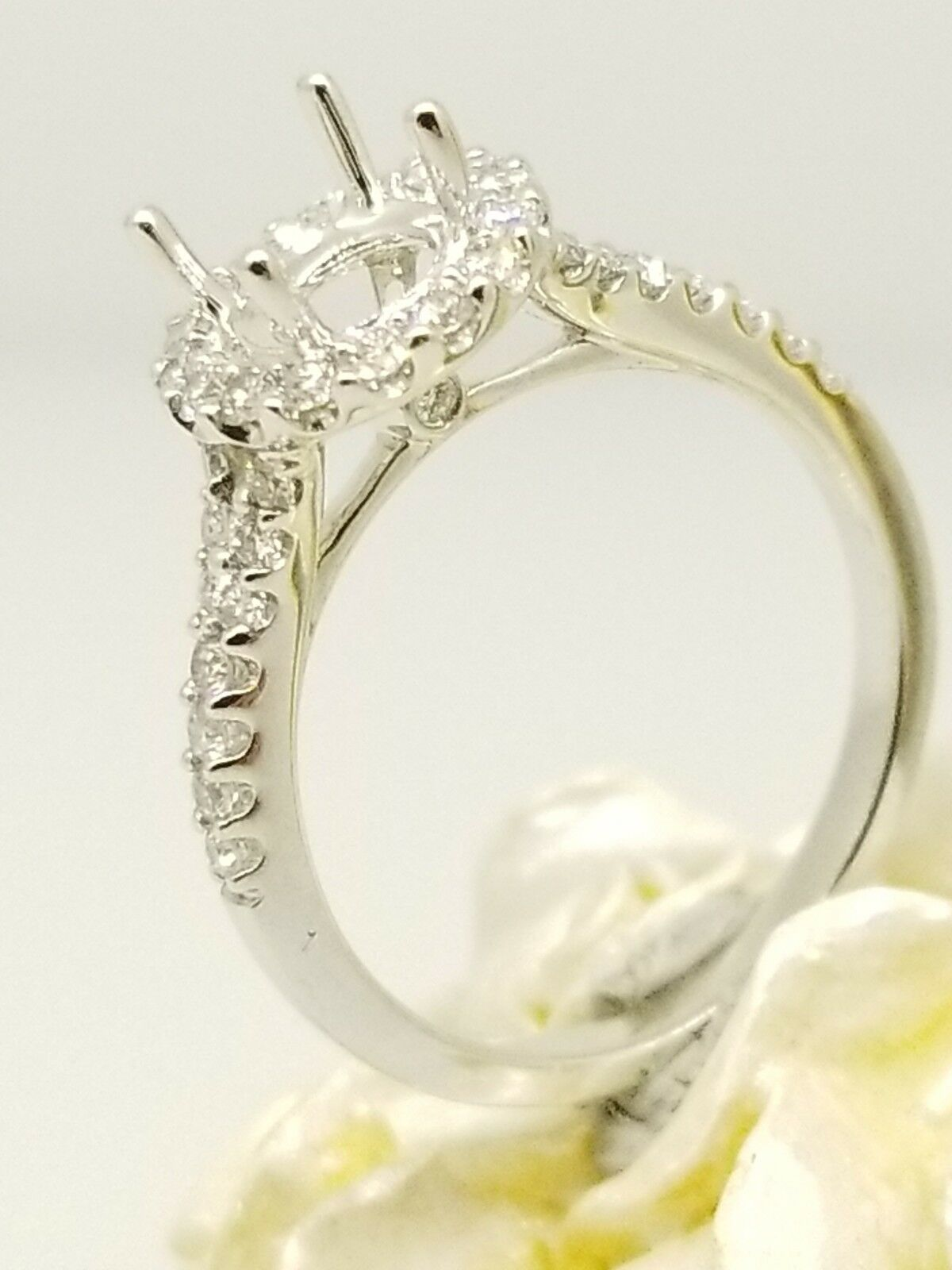 0.53ct 18k White gold Halo Diamond Engagement Ring Suitable with 1.00 Carat Head
