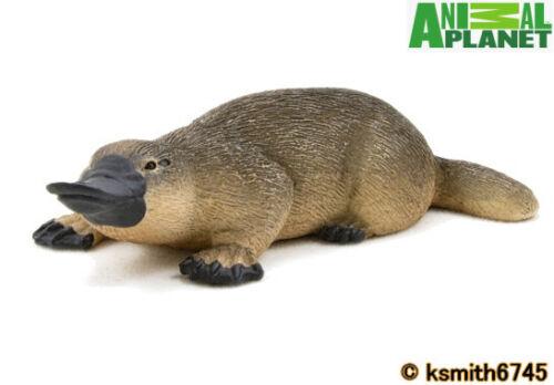 Nuevo Mojo Animal Planet Ornitorrinco juguete de plástico sólido Wild Zoo australiano