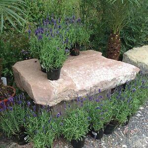 Ancien Banc de Jardin Herbes Table Plantation Pierre Naturelle Mur ...