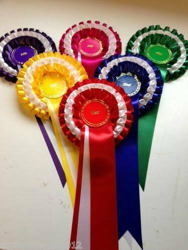 10 sets of 1st to 6th 3 tier placing rosettes