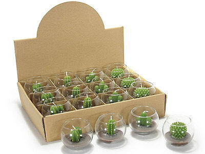 Candela a forma di pianta grassa in sfera di vetro Ø 6,7 cm