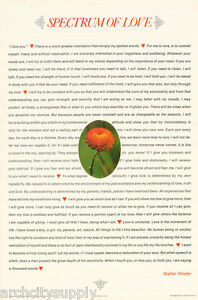 Walter rinder spectrum of love