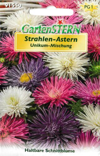"""Strahlen-Astern Unikum Mischung einjährig Blumensame /""""Top Qualität/"""" ca 50 Pfl."""
