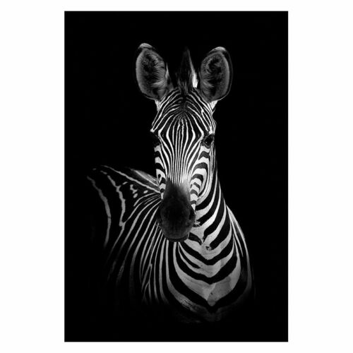 Canvas Painting Animal Wall Art Lion Elephant Deer Zebra Posters Prints Picture