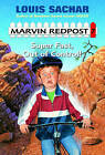 Super Fast, Out of Control! by Louis Sachar (Hardback, 2000)