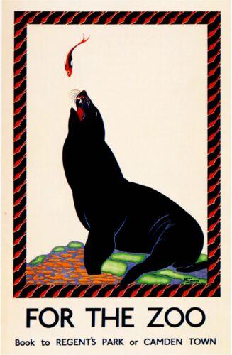 London Regent/'s Park Zoo Seal Great Britain England Advertisement Art Poster