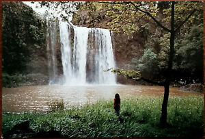 Whangarei-Falls-Whangarei-Northland-New-Zealand-Post-Card