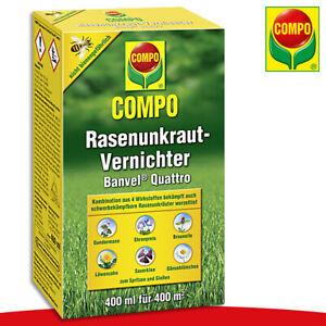COMPO-400-ml-Rasenunkraut-Vernichter-Banvel-Quattro-Braunelle-Gaensebluemchen