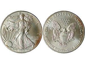 1 Once Argent 2013 Etats-unis Oz Silver Bu Usa Liberty Walking American Eagle P2 Lissage De La Circulation Et Des Douleurs D'ArrêT