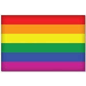 """Gay Pride Rainbow Flag car bumper sticker 5/"""" x 4/"""""""