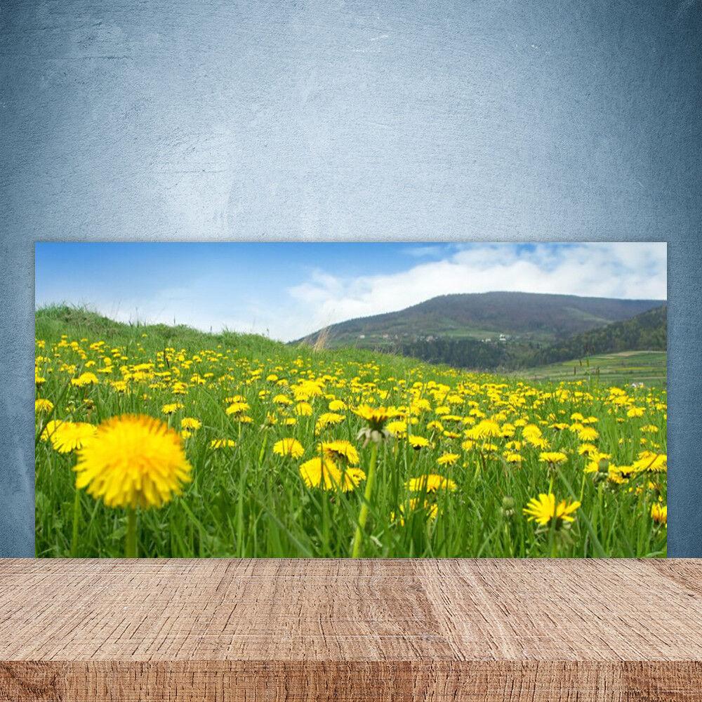 Cupboard kitchen glass wall panel 100x50 nature dandelion field