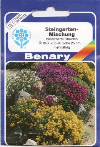 Steingarten Mischung mit 30 verschiedene Arten 100 Pflanzen  Benary Samen