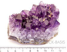 Amethyst - Kristalle / Amethyst - Druse;  6 - 8 cm;  TOP-Farbe!!!!