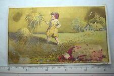 Hiram Sibley & Co Garden Field & Flower Seeds Farm Child Pitching Hay F59