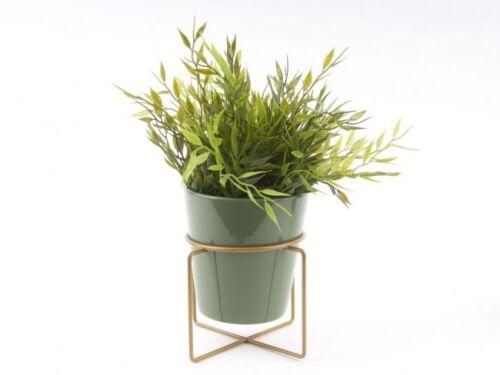 Couleur petites métallique en laiton maison Cactus Gold encadrée COY céramique pot de fleurs