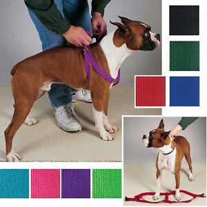 Step-In-Dog-Harness-USA-Seller-Nylon-Adjustable-Two-Steps-Guardian-Gear-Walking