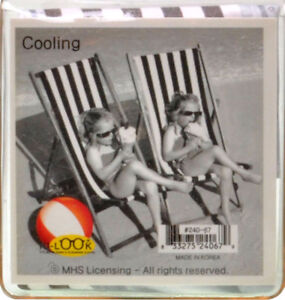 NEW-Young-Girls-In-Deck-Chairs-Eating-Ice-Cream-Microfiber-Glasses-Cleaning-Clot