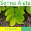 Senna-alata-200-g-Acapulo-Candle-bush-Candlestick-senna-powder-100 thumbnail 1